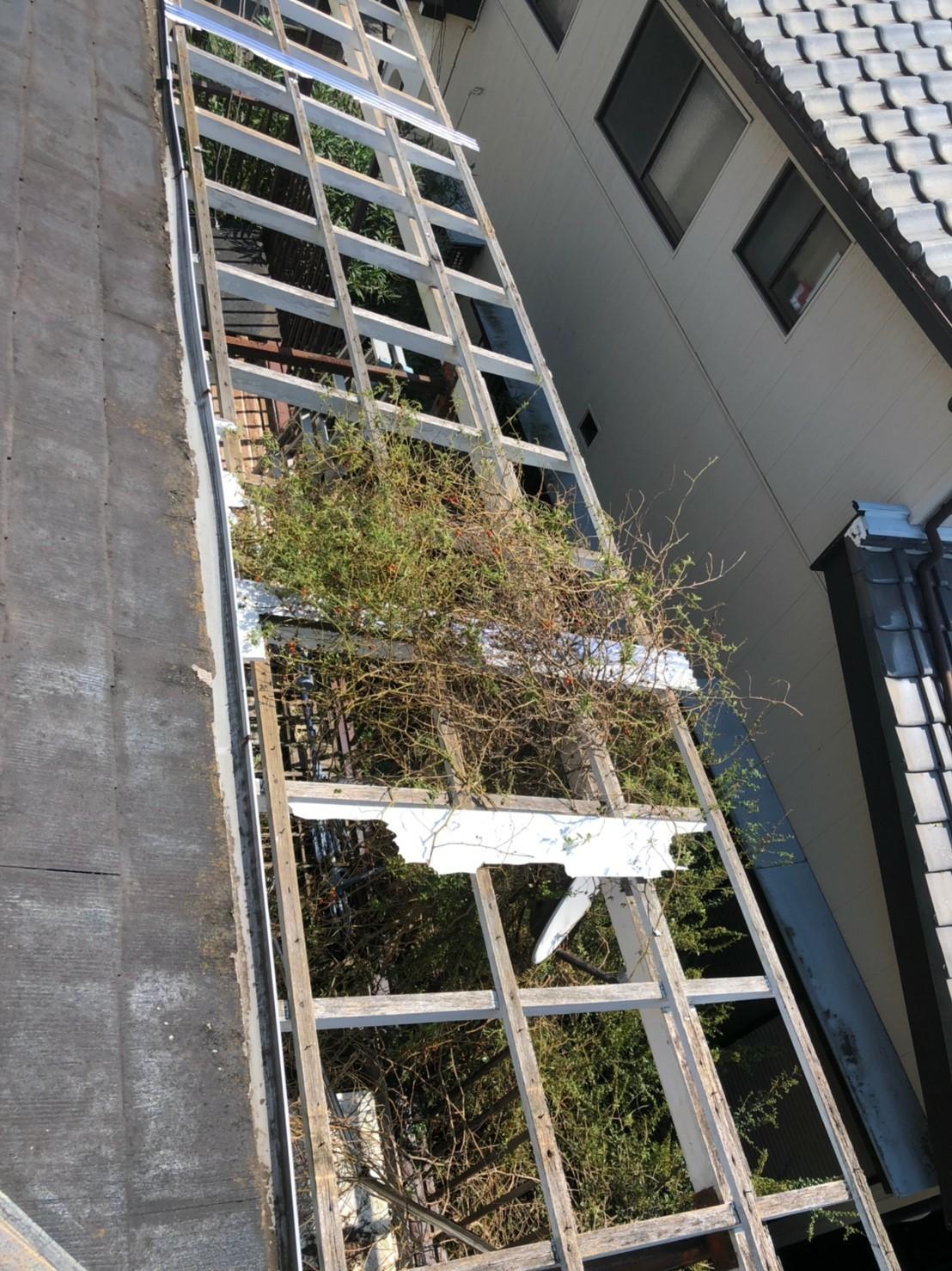 千葉市中央区 (7)